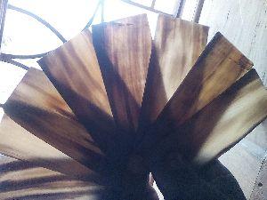 Buffalo Horn Plate 04