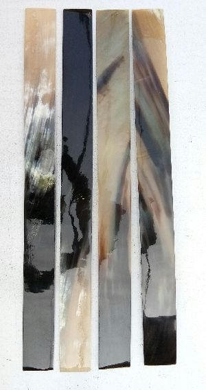Long Ox Horn Plates