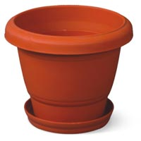 Plastic Lilly Flower Pot