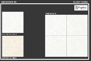800x800mm Polished Floor Tiles 02