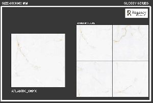 800x800mm Polished Floor Tiles