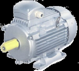 Energy Efficient A.C. Induction Motors