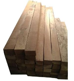 Processed Neem Wood