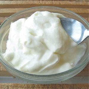 Thick & Creamy Yogurt