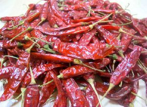 IPM Dried Red Chilli