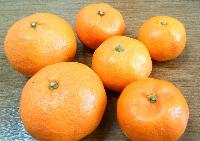 Fresh Japanese Orange