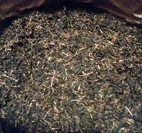 Organic Red Tea Leaf