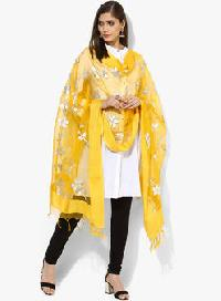 Brush Print Silk Dupatta 11