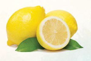 Lemon 01