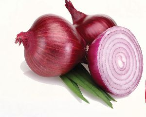Red Onion 02