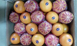 Valencia Orange 06