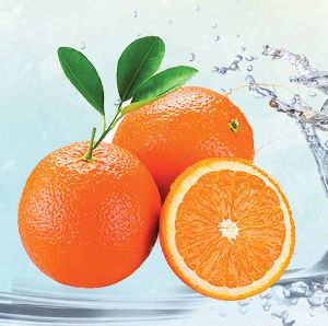Valencia Orange 01