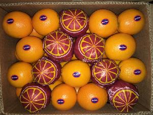 Valencia Orange 20