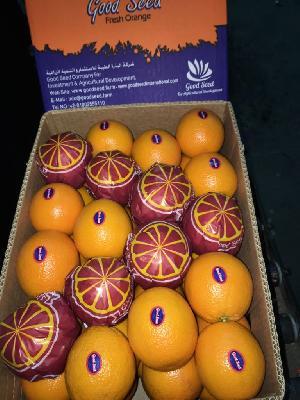 Valencia Orange 21