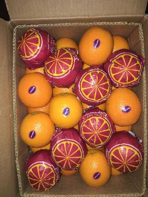 Valencia Orange 22