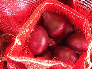 Red Onion 06