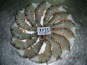 Frozen Hlso Black Tiger Shrimps