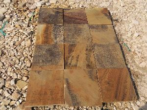 Fossil Mint Sandstone 03