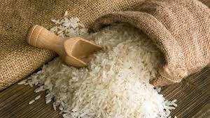 Rice 04