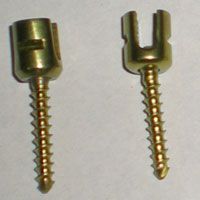 Lateral Mass Screws