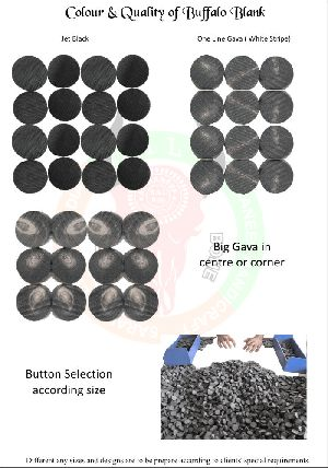 Buffalo Horn Blank Button 05