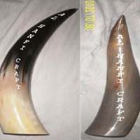 Horn Decorative Item 01