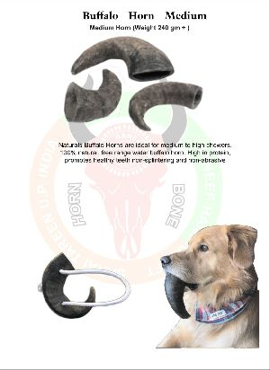 Dog Chew Buffalo Horn 02