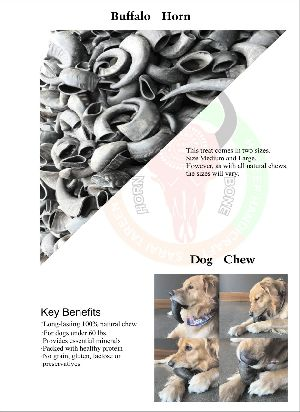 Dog Chew Buffalo Horn 04
