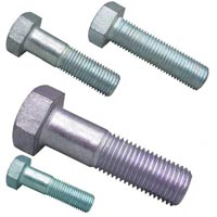 SS 316 Fasteners