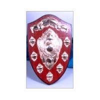 Award Shields