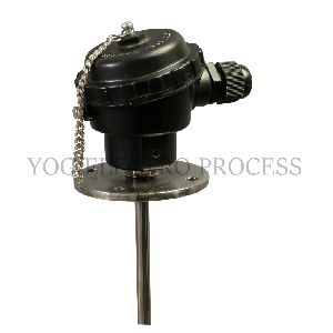 Thermocouple with Flanges At Head