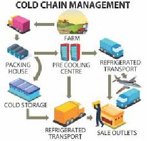 Supply Cold Chain Management
