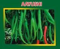Aayushi Hybrid Green Chilli Seeds