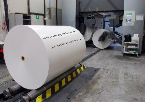 Poly Coated White Paper Roll 02
