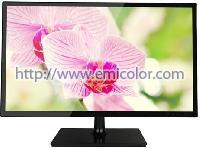 EM195XG2 19.5 Inch LED Monitor