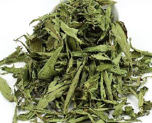 Dried Stevia Leaves