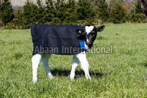 Calf Canvas Blanket 03