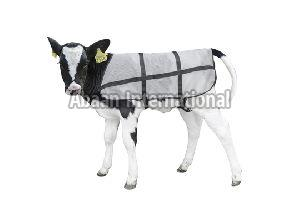 Calf Fleece Blanket 01