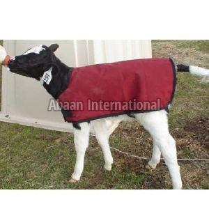 Calf Fleece Blanket 02