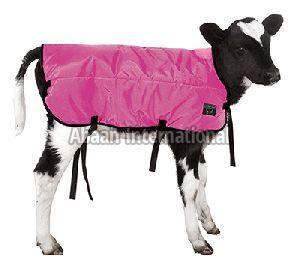 Calf Winter Blanket 01