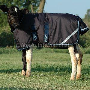 Calf Winter Blanket 06