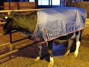 Calf Winter Blanket 10