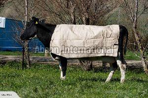 Cow Canvas Blanket 01
