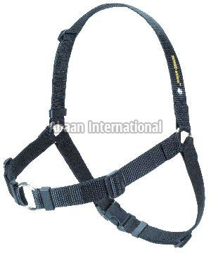 Dog Harness Set 03