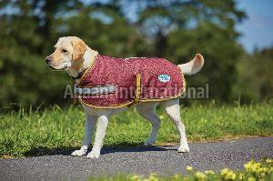 Dog Winter Coat 01