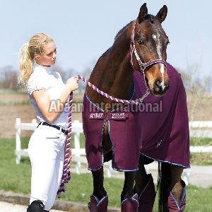 Horse Fleece Rug 01