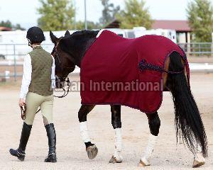 Horse Fleece Rug 03