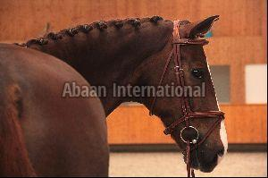 Horse Leather Bridle 02
