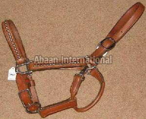 Horse Leather Halter and Head Collar 07