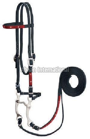 Horse Nylon Bridle 06